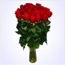 35 rudých růží