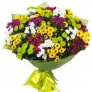 Barevné chryzantémy
